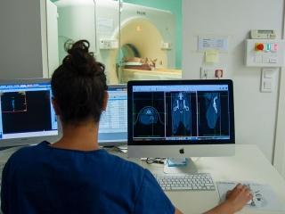 clinique-vet-occitanie-scanner-01